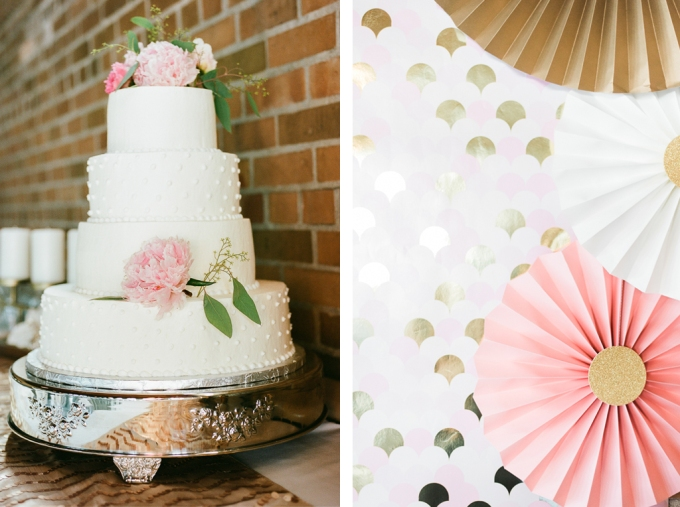 alizaraephotography_wedding054