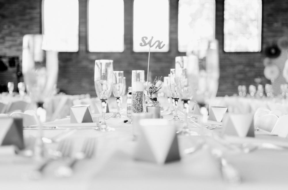 alizaraephotography_wedding063